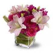 Цветы с доставкой ереван купить цветы саженец